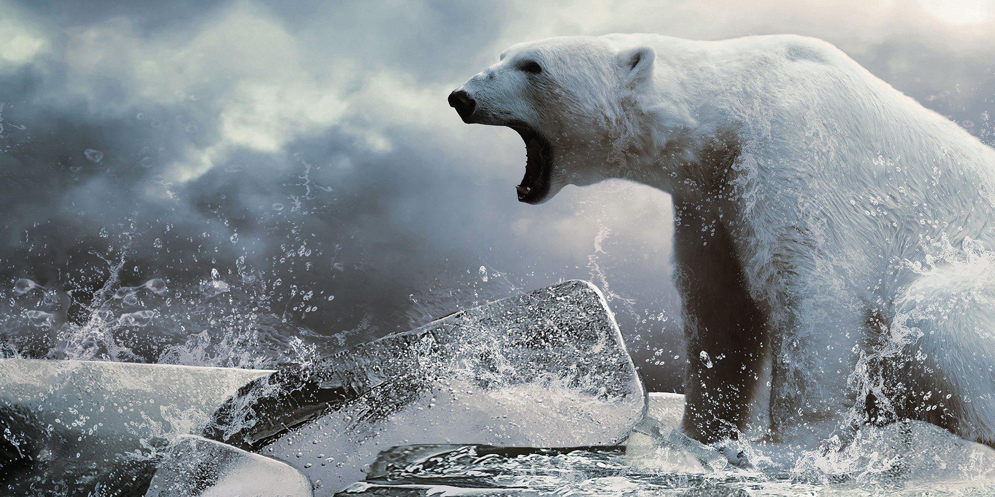 Nanuk Polar Bear